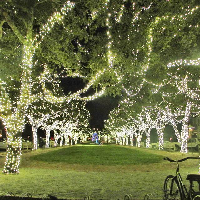 rosemary-beach-christmas-lights-north-barrett-square