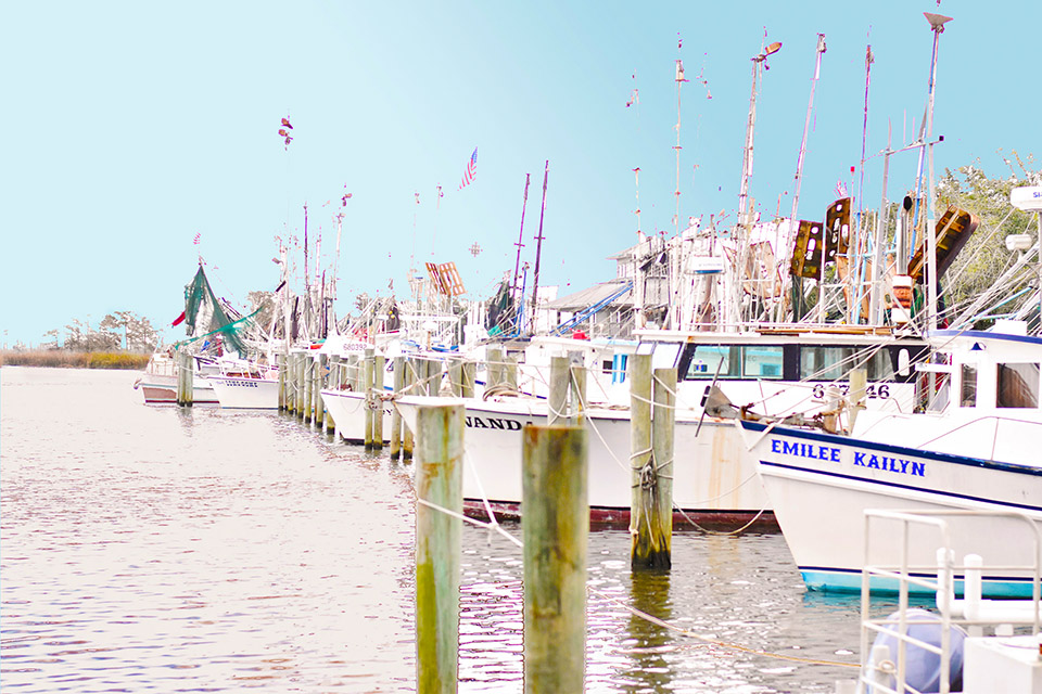 Toyota Road Trip 30A to Apalachicola Shrimp Boats